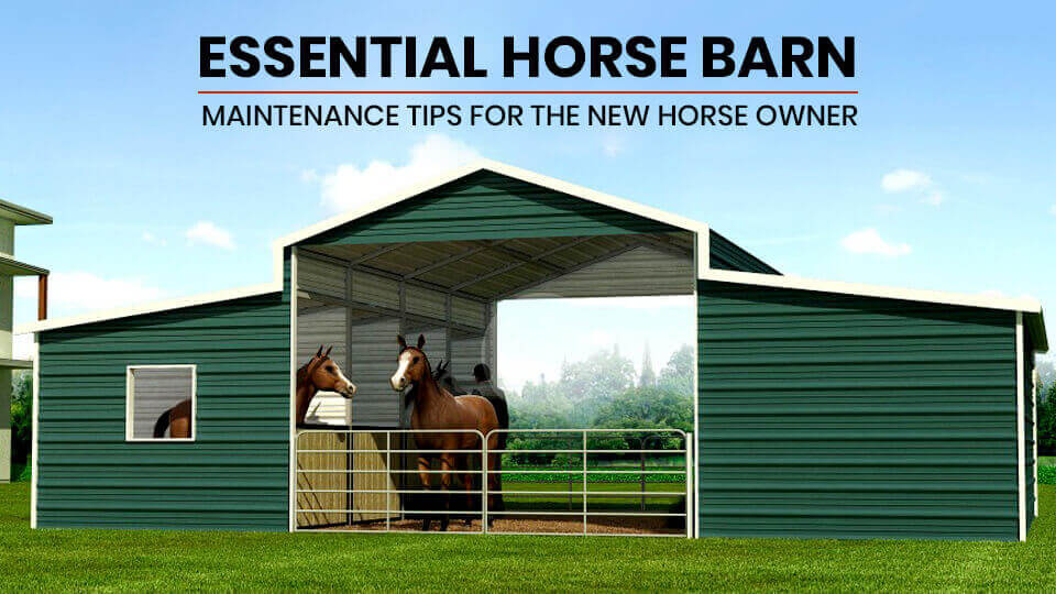 Essential Horse Barn Maintenance Tips for the New Horse Owner
