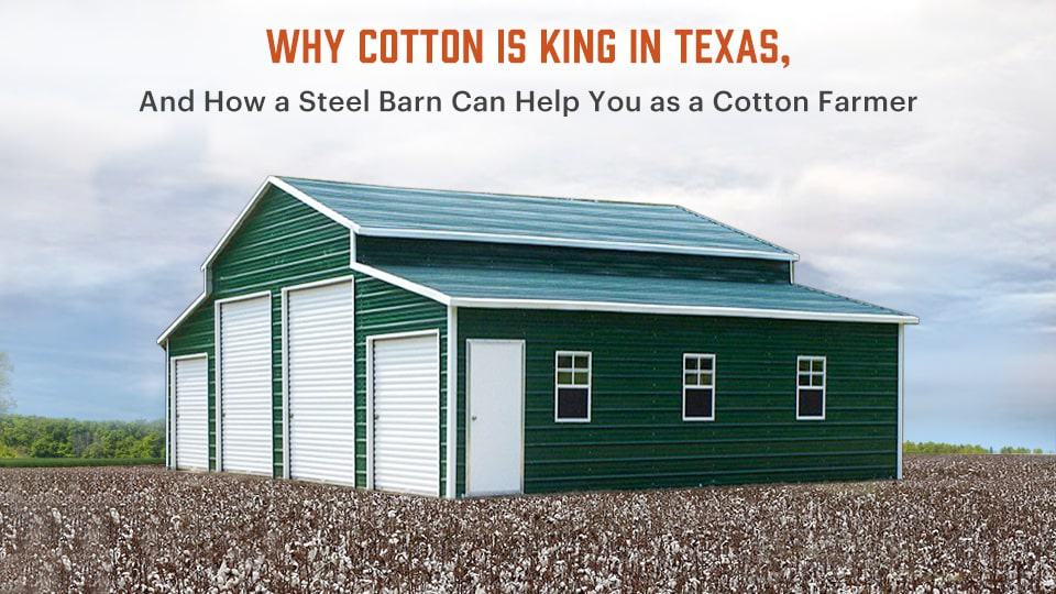 Why Cotton Is King in Texas, and How a Steel Barn Can Help You as a Cotton Farmer